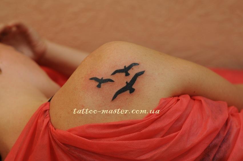 Татуировка птицы на плече