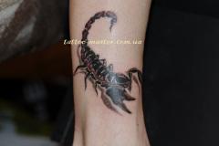 Сделать Татуировку  на ноге в Киеве - Студия татуировки ТМ
